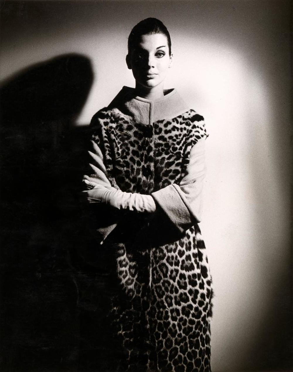 Henry Talbot No title (Fashion illustration, model MaggieTabberer wearing ocelot coat) 1961–66 gelatin silver photograph 24.0 x 19.0 cm (image and sheet) Henry Talbot Fashion Photography Archive (119634) © Lynette Anne Talbot