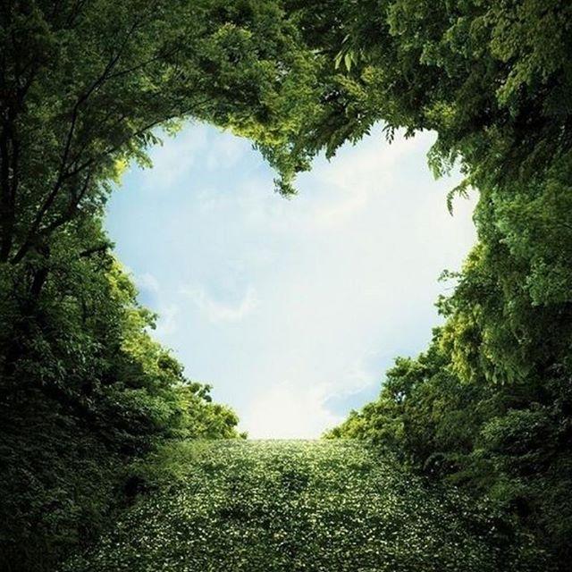Nossa maior paixão é a natureza. - www.sulnativo.com.br  #boanoite #amor #meuamor #meubb #minhavida #meubem #vida #love #bebê #teamo #teamomuito #teamooo #euteamo #presente #namoro #namorados #namorada #namorado #casal #casamento #casados #noiva #união #distância #filme #estudante #livro #noivos #mylove #amoreterno