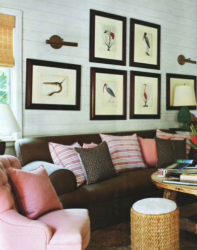 mark-catesby-prints-house-beautiful-jpocker-new-york