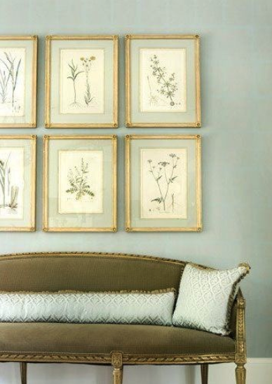 botanical prints gold frames jpocker new yorkpng