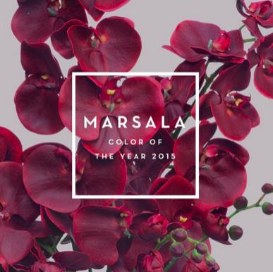 marsala-color-2015-jpocker-new-york