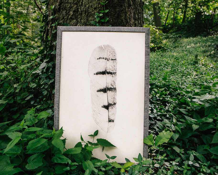 jpocker_custom_framing_nyc_central_park_feathers.png