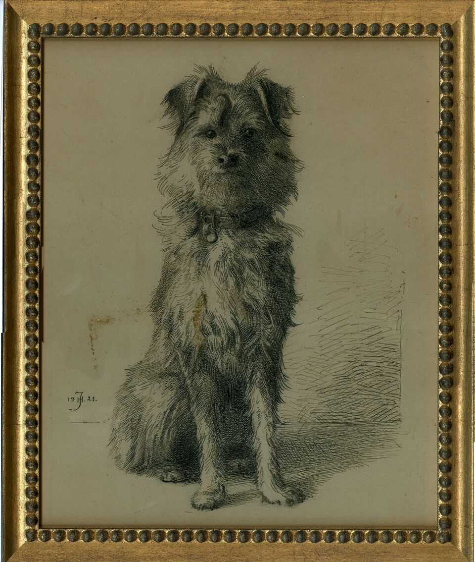 Dog, Brewster