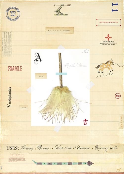 Apache Plum