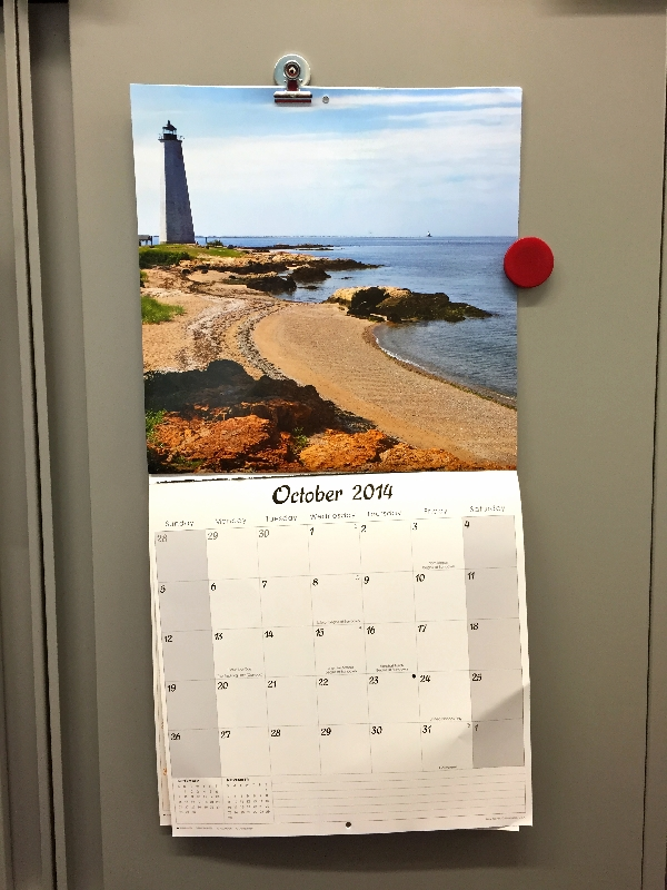 office calendar(sonya kovacic)