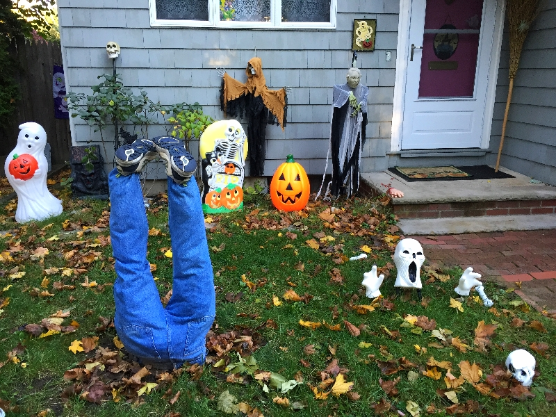 halloween decorations, cambridge (sonya kovacic)