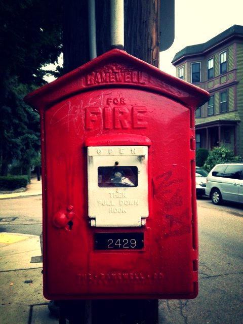 fire alarm call box, jamaica plain (sonya kovacic)