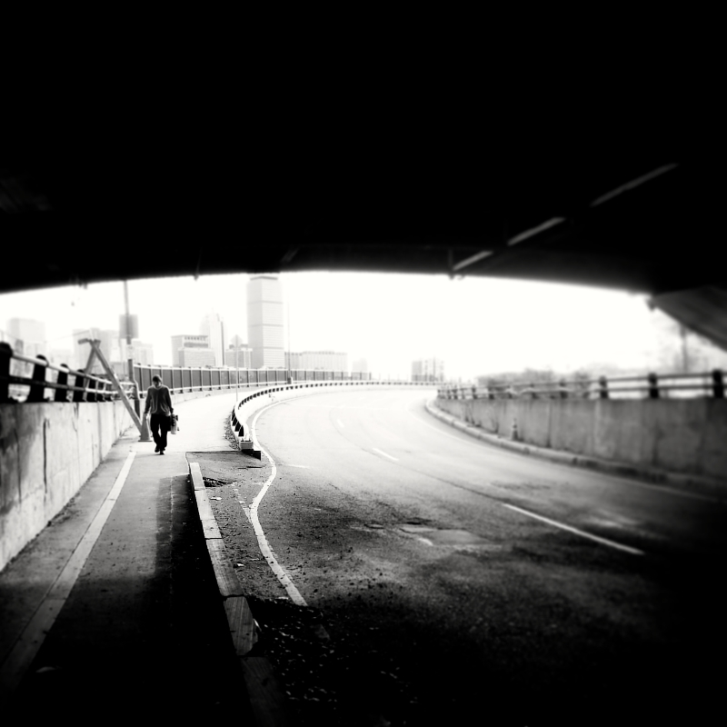 memorial drive, under the longfellow bridge  (sonya kovacic)