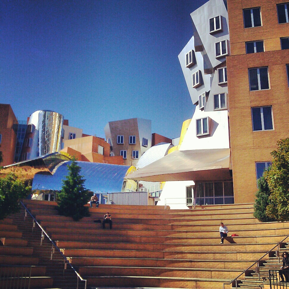 the stata center at MIT  (sonya kovacic)
