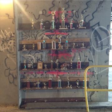 trophies under the  longfellow bridge   (laura davis)
