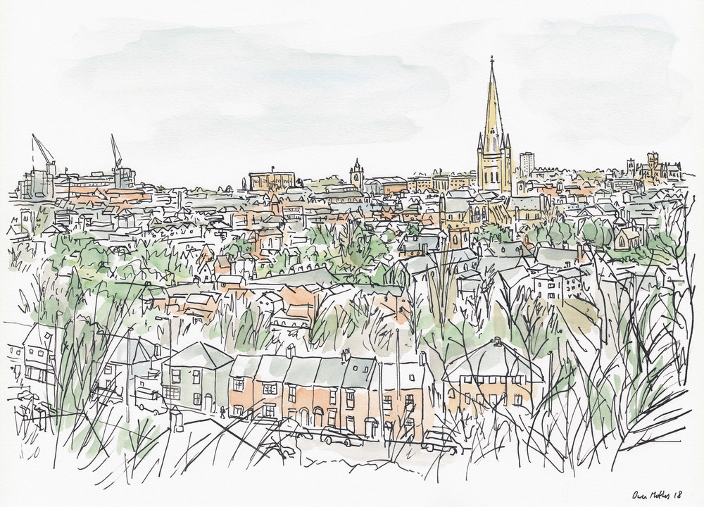 Norwich from Mousehold