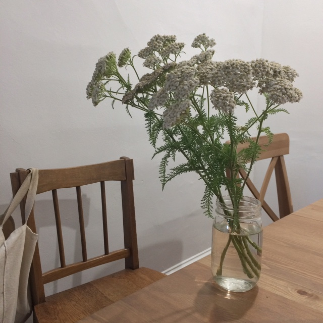 My friend Kat is a floral designer and flower farmer.  She gave me this yarrow from her farm in rural Pennsylvania the other day, and I am enjoying it a lot.  Check out her website  here  for some information about a flower CSA that she distributes.  I know she's going to be supplying tons of beautiful flowers to her CSA clients this summer!