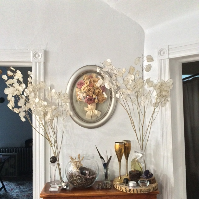 Our altar for the equinox.  Chris doesn't like to change things on it as much as I do, but we have different practices.  The lunaria will be enjoyed by both of us for a long while - they're so shimmery and luminous.