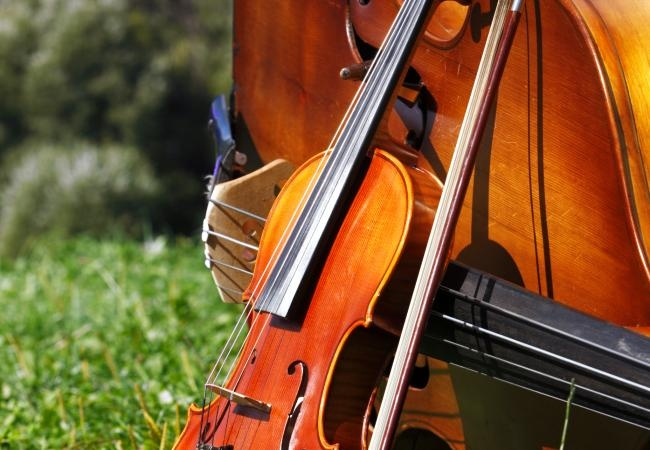 The Fellowship Series - Hear the Montgomery Symphony Orcestra's two young Artists-In-Residence perform a series of six exciting chamber music concerts at the Montgomery Museum of Fine Arts.