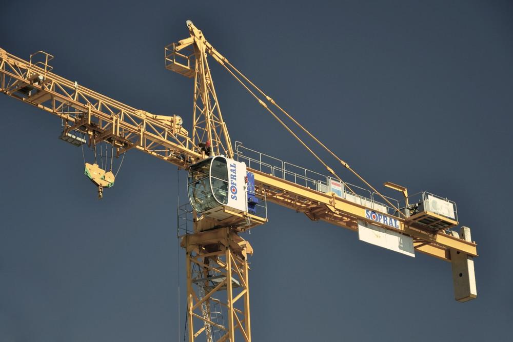 Yellow Crane.jpg