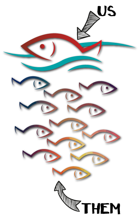 Different-Fish-With-Comments.png
