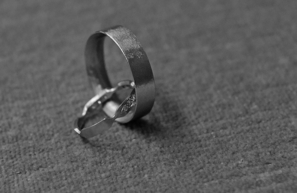 Amy + Ryan's Rings - detail