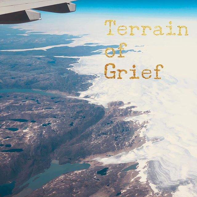 In my guidebook through the grief journey Dread, Fear, Numbness, Guilt, Self-Doubt, Shock, Confusion, Family Drama and more, all come under the umbrella chapter of The Terrain. For more help please click on my bio. #courage #grief #inspiration #griefandloss  #griefbooks
