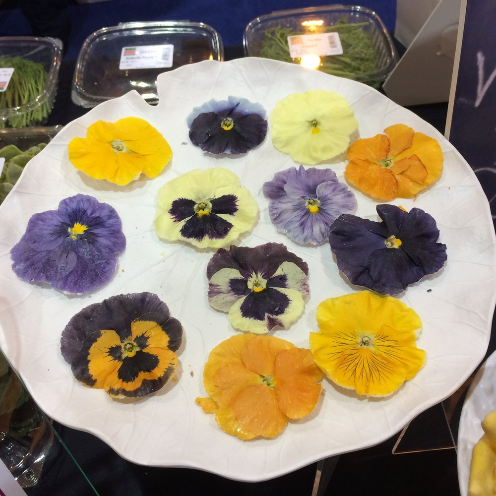 Crystalized Edible Flowers - Let's do it!