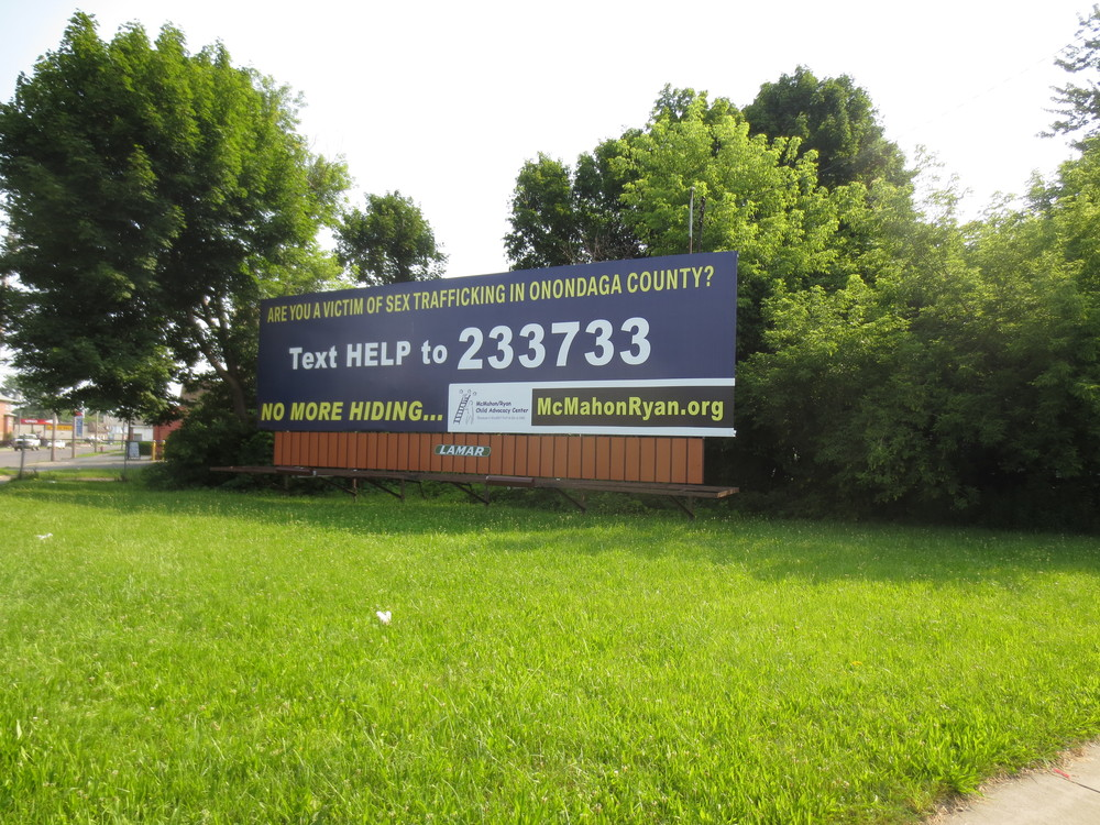 While taking down the billboard is a bit out of our pay-grade, the forest behind it was fair game.