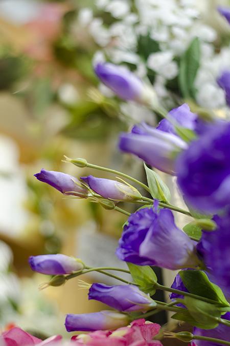 FlowersFruit1.jpg