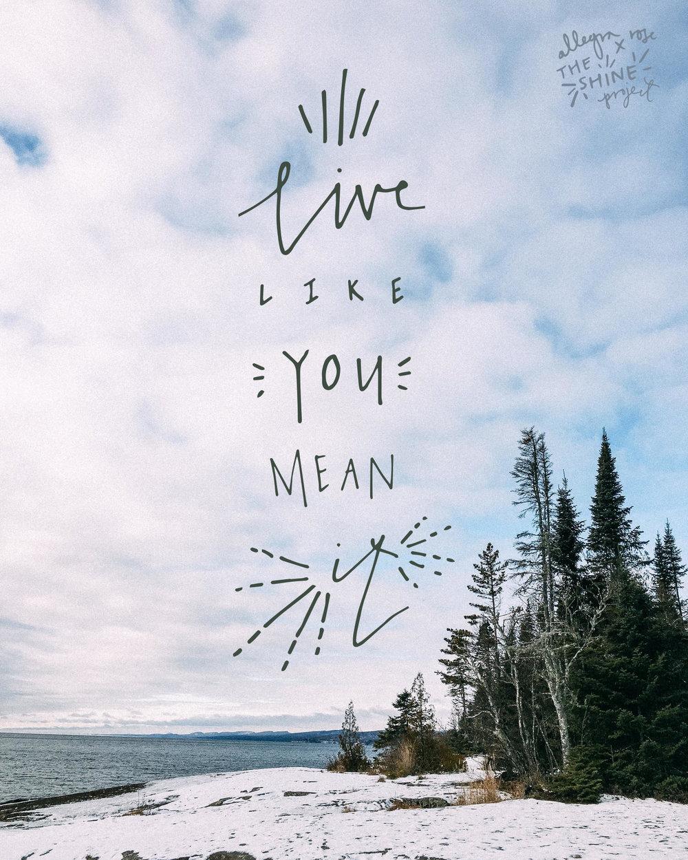 TSP Live Like You Mean It.jpg