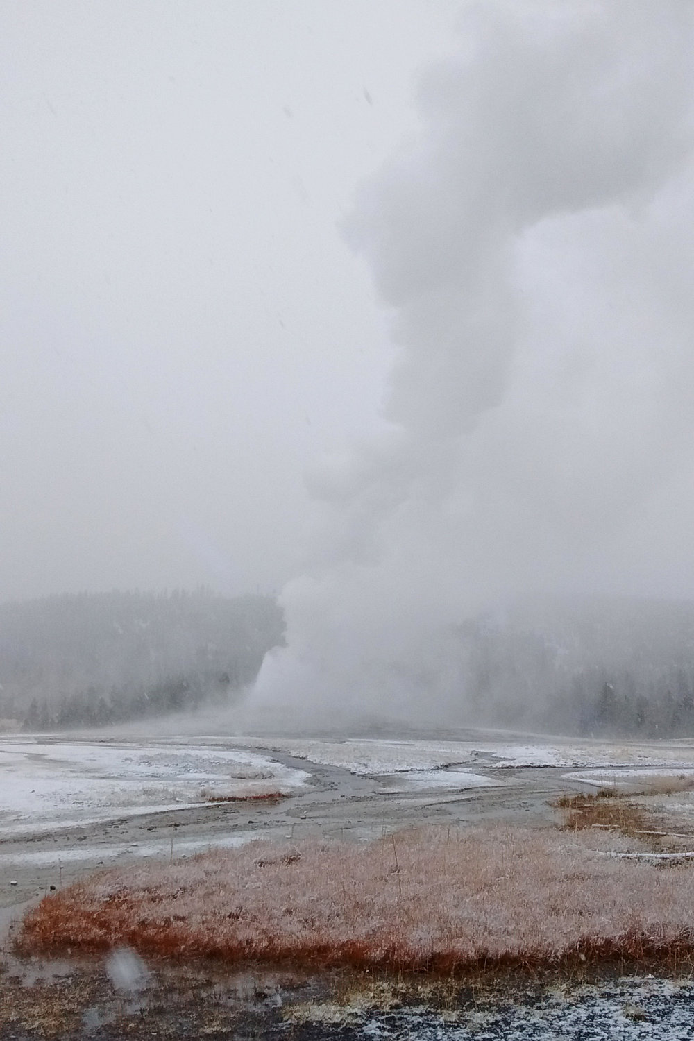 Weather is unpredictable in Yellowstone. Old Faithful Geyser erupting during a snow storm in July.