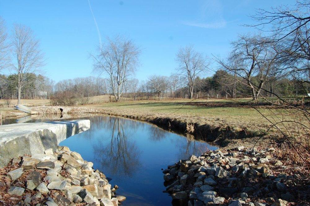 Old Fields Farm, 12-27-2014 096.jpg