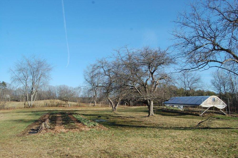 Old Fields Farm, 12-27-2014 098.jpg