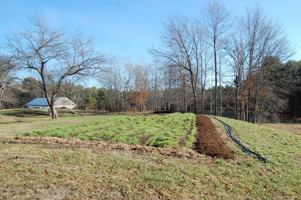 Old Fields Farm, 12-27-2014 099.jpg