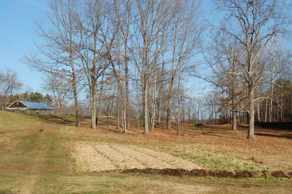 Old Fields Farm, 12-27-2014 104.jpg