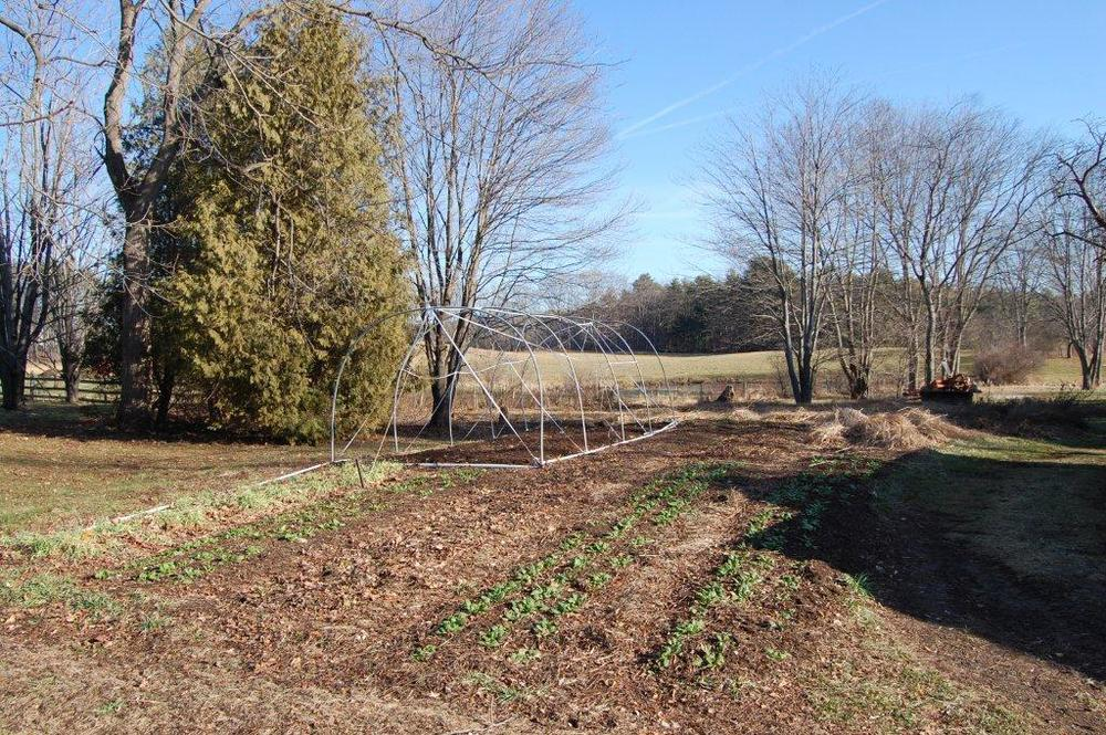 Old Fields Farm, 12-27-2014 110.jpg