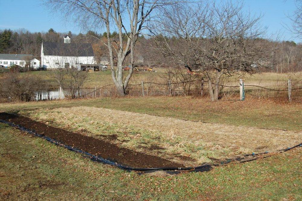 Old Fields Farm, 12-27-2014 109.jpg