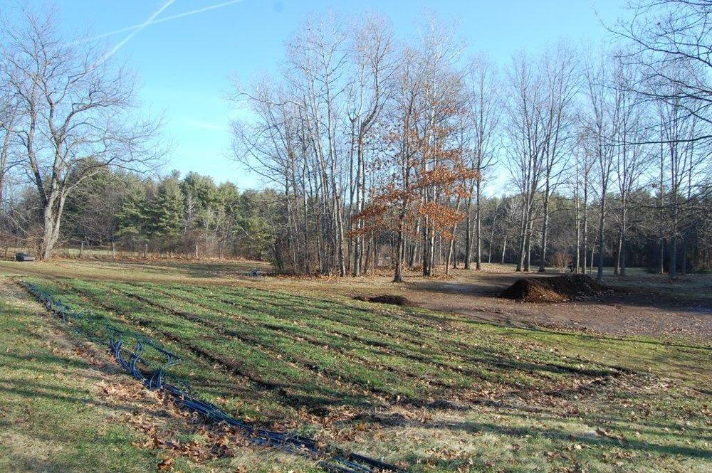 Old Fields Farm, 12-27-2014 107.jpg