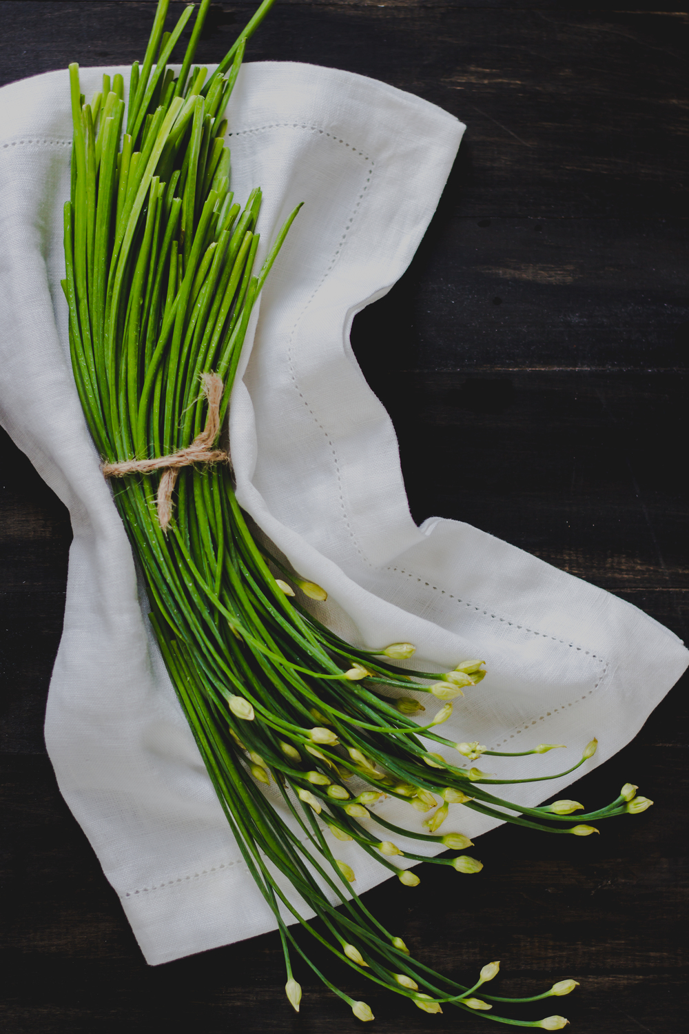 garlic chive flowers1.jpg