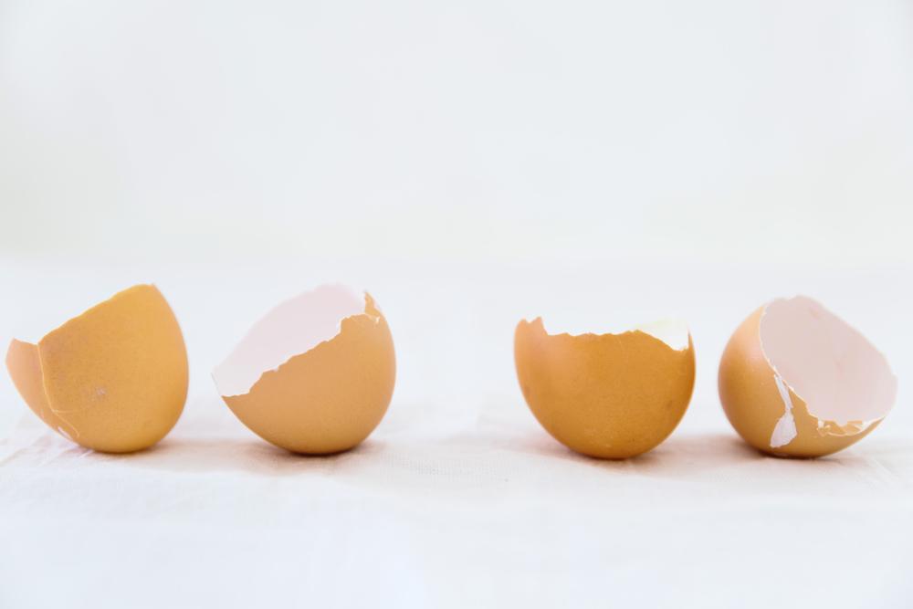 egg shells-1.jpg