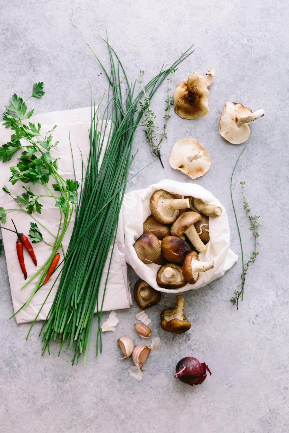 mushrooms prepping1.jpg
