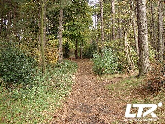 Love Trail Running Early Days034.jpg