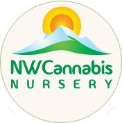 NorthWest Cannabis Nursery
