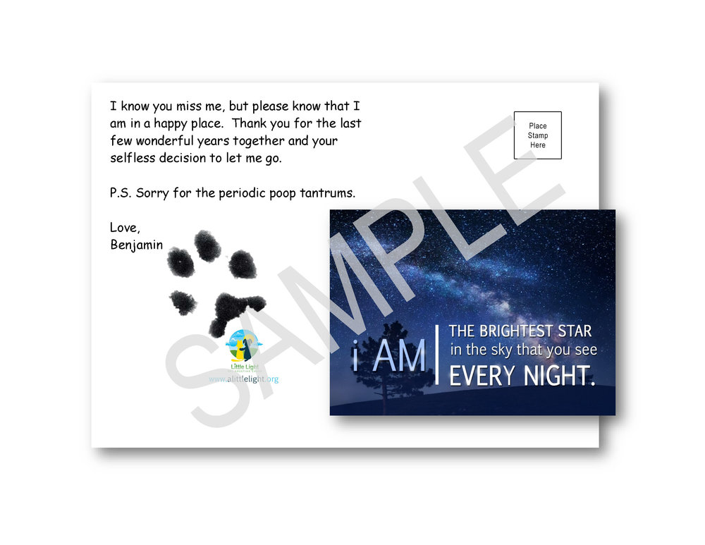 Small Dog or Puppy Print on Brightest Star Card.jpg