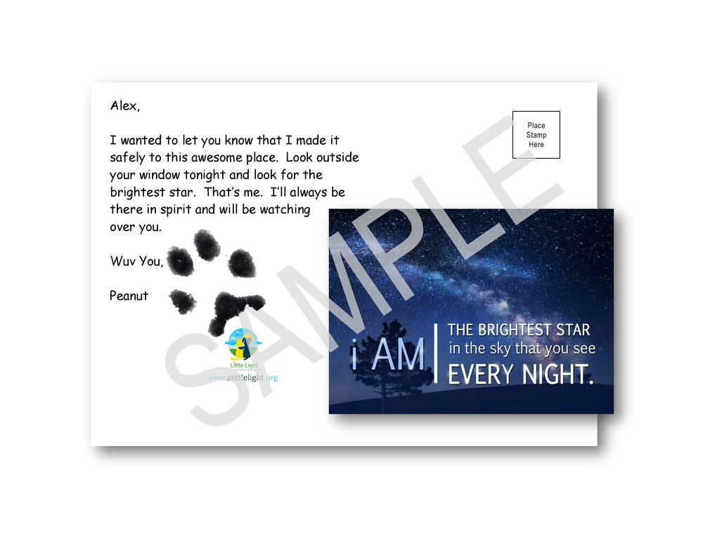 Small Dog or Puppy Print on Brightest Star Card 2.jpg