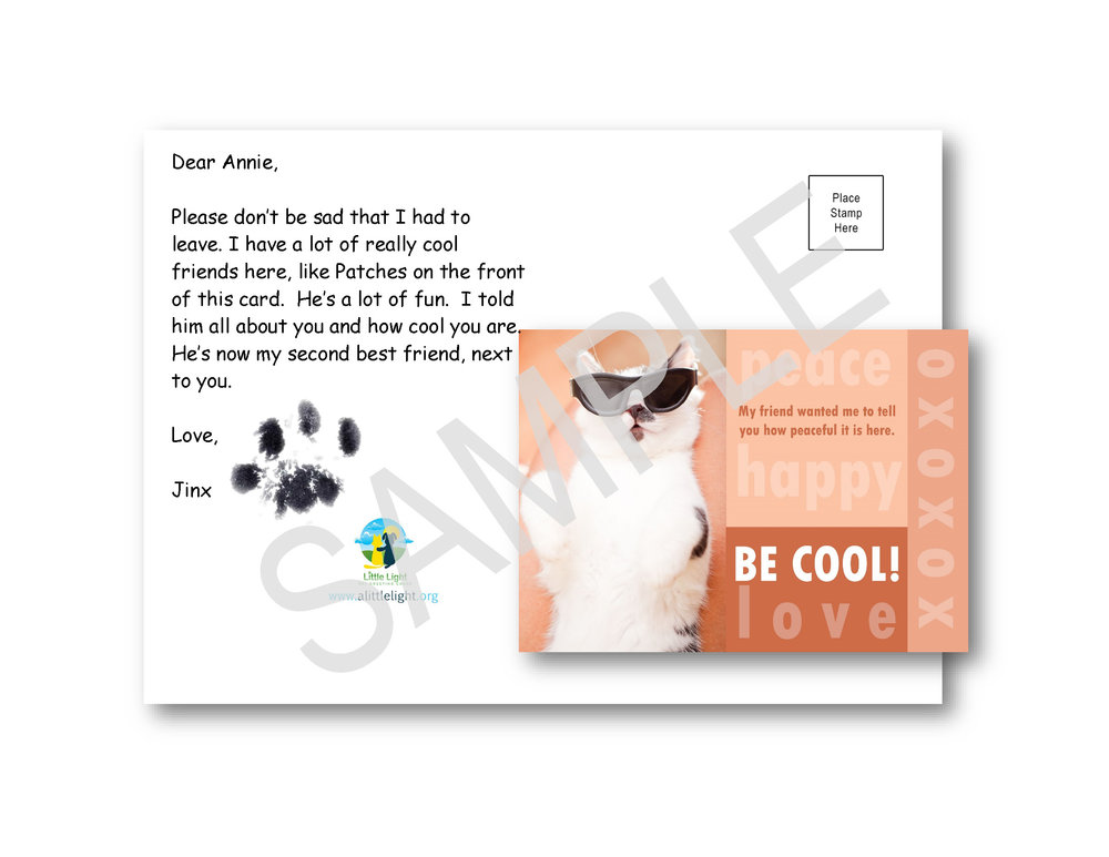 Cat Print on Cat Card.jpg