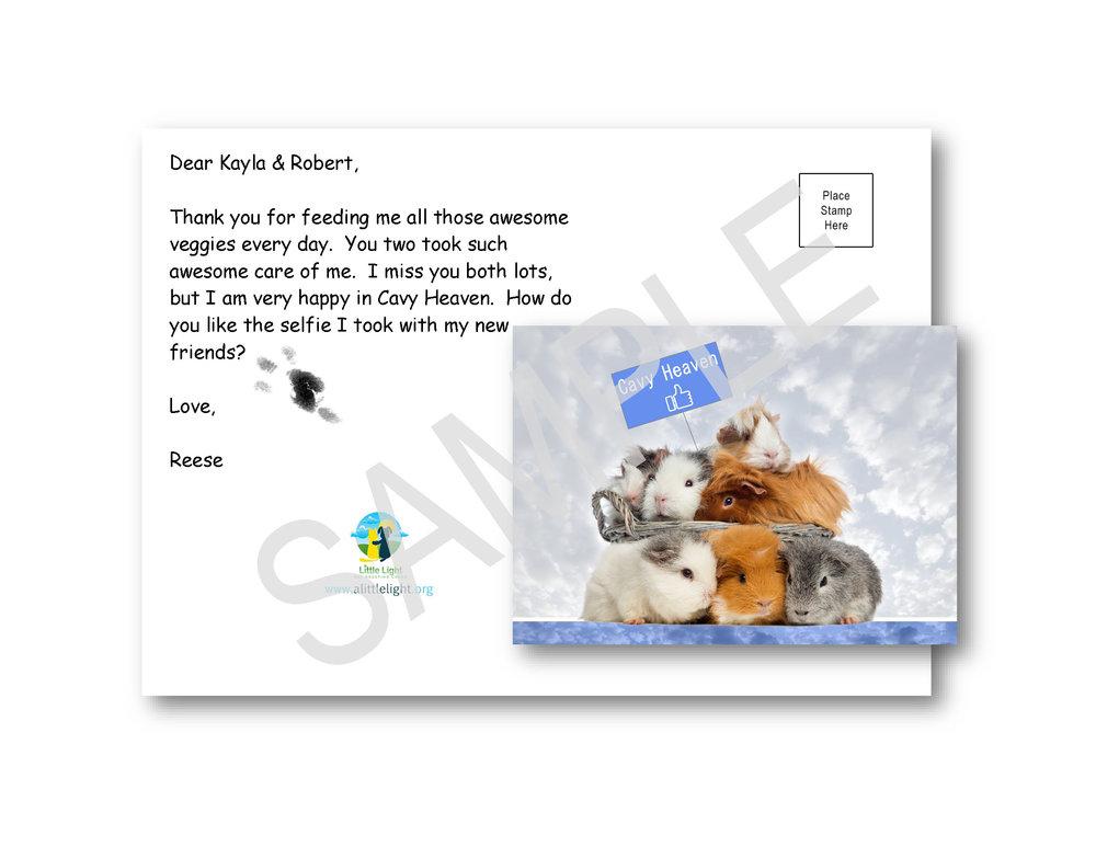 Guinea Pig Print on Guinea Pig Card.jpg