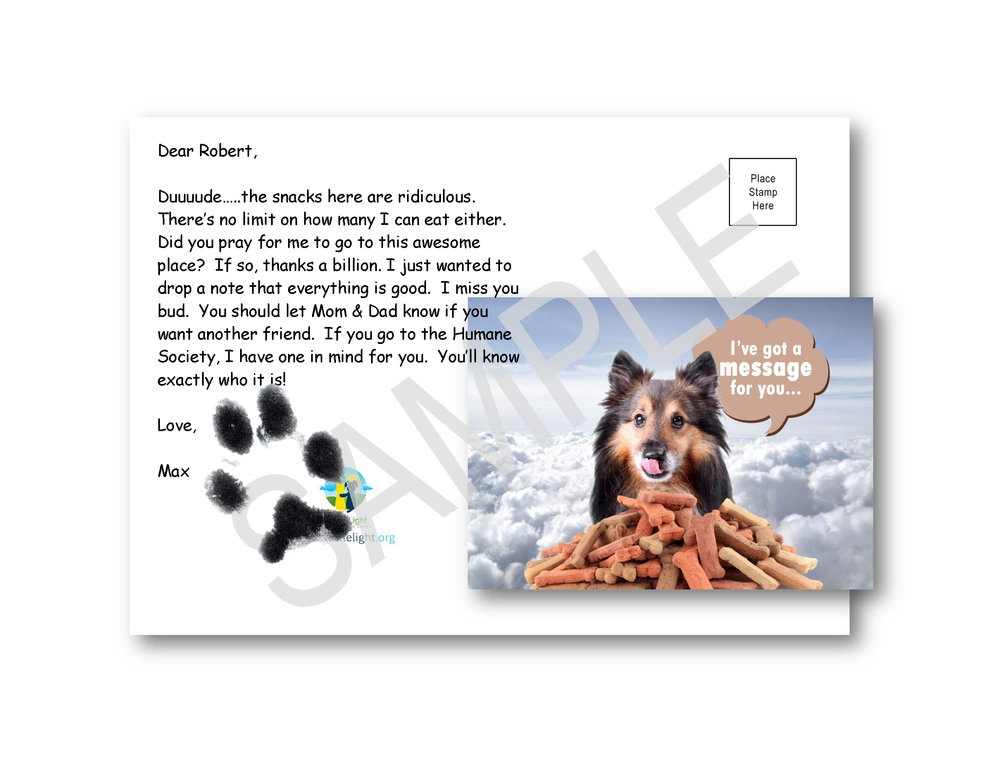 Medium Dog Print on Dog Bones Card.jpg