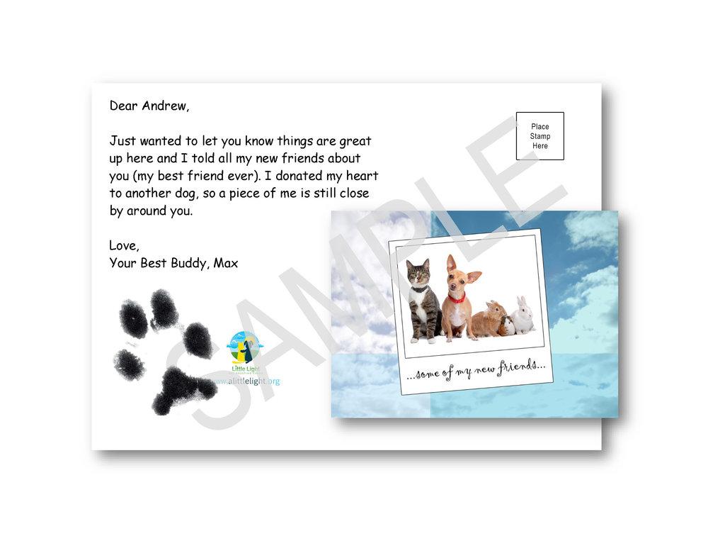Postcard Example 1.jpg