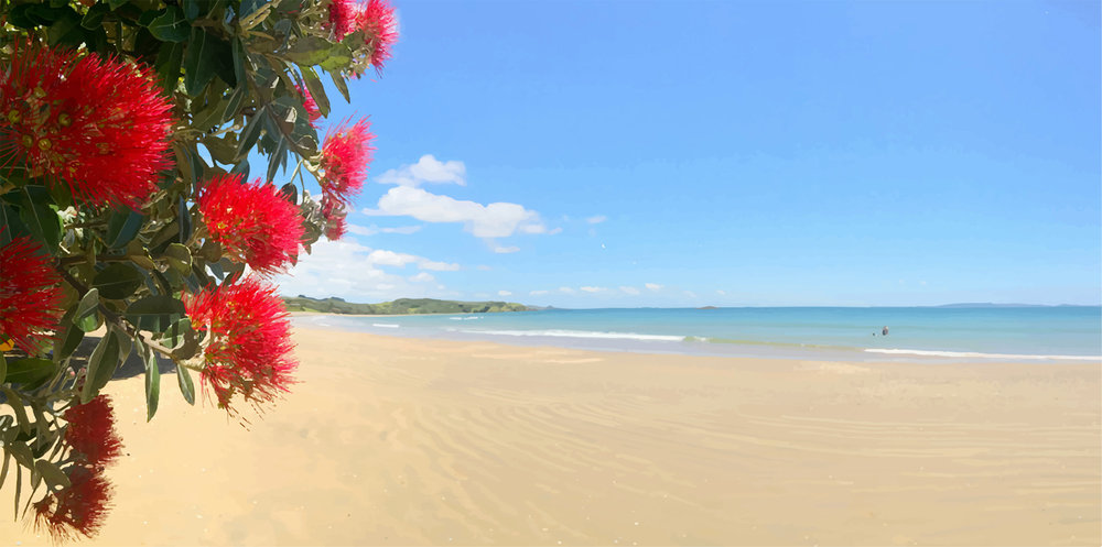 NZ-summer.jpg