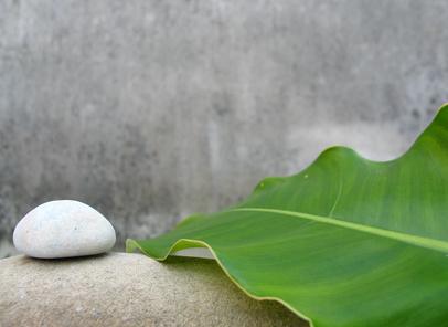 Stone and Leaf.jpg