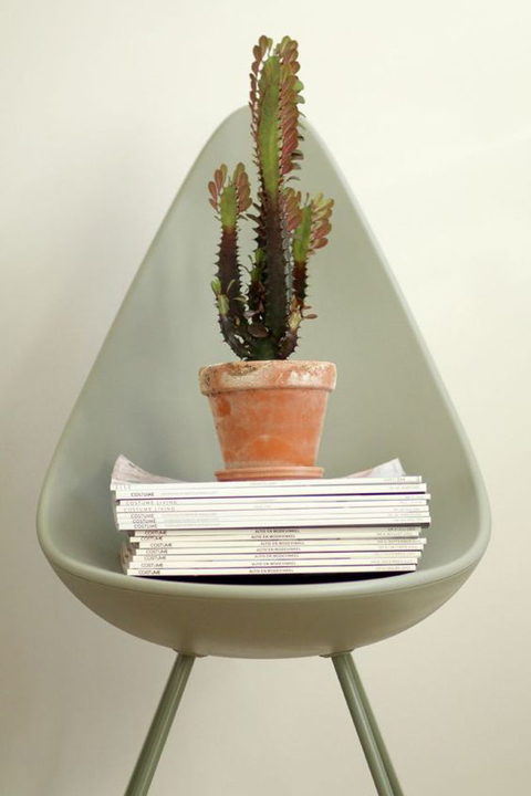 Drop Chair with cacti.