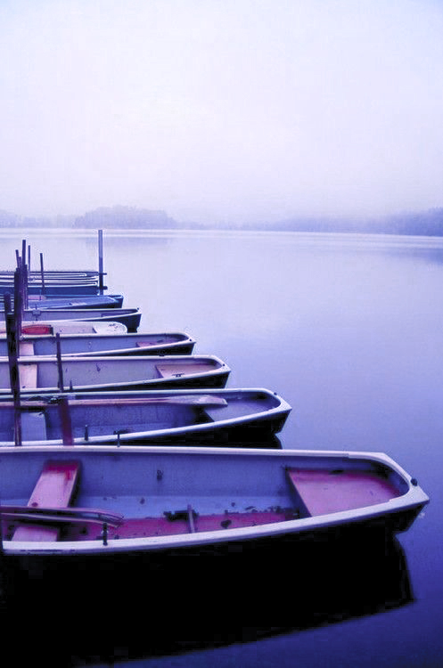Boats in the morning mist, Tumblr.