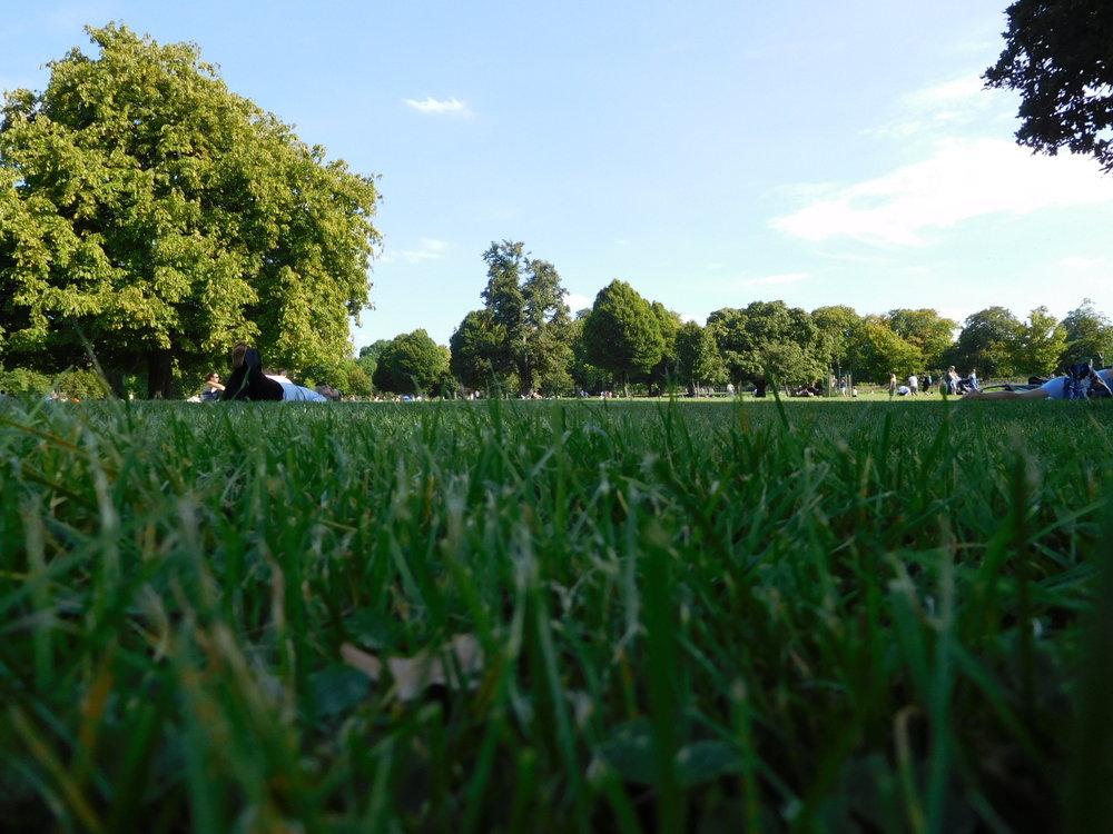 ^  Clissold Park, Highbury/Stoke Newington